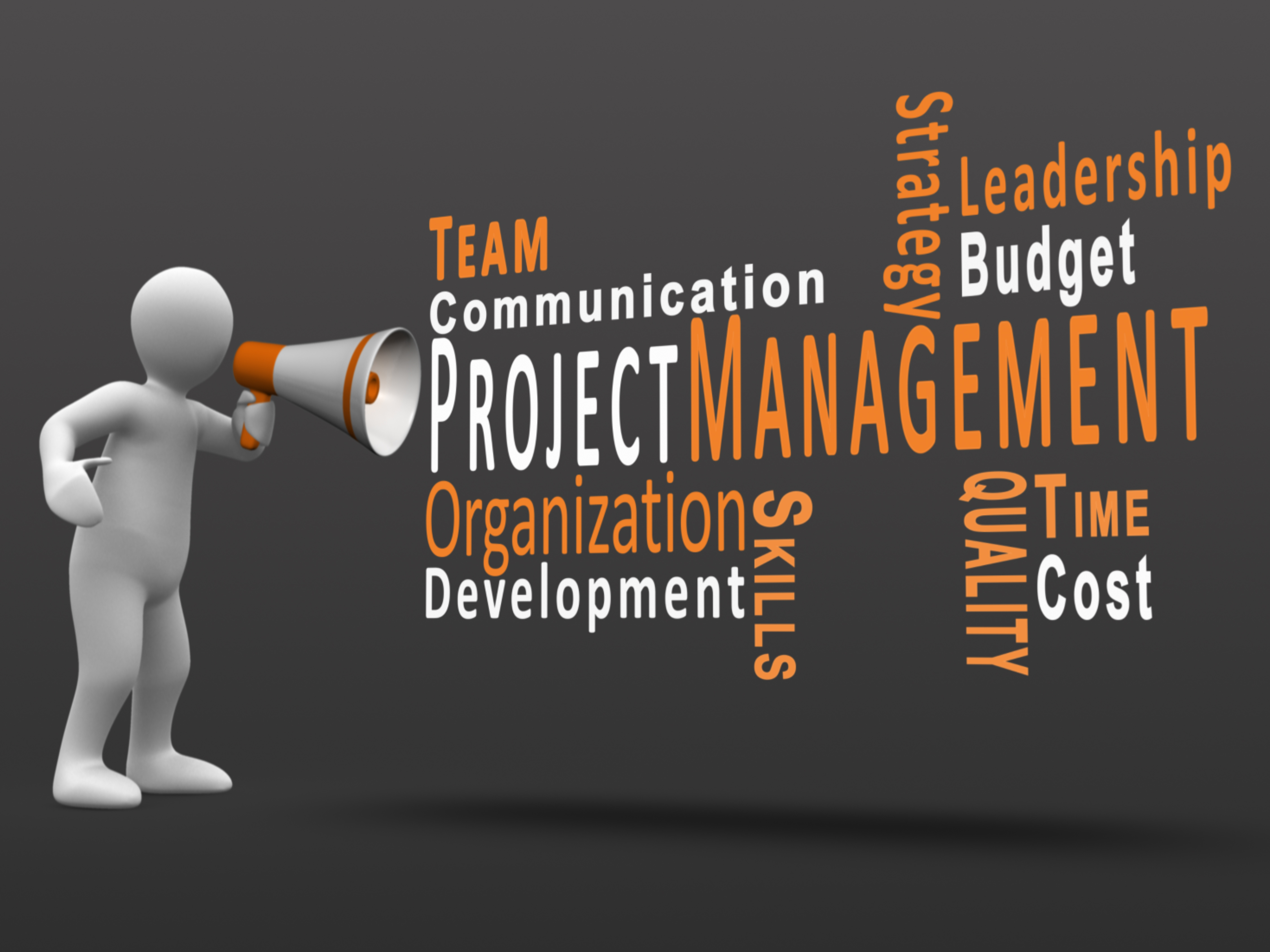 Project Management: Project & Portfolio Management